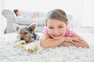 Chandler Carpet Cleaning Specials